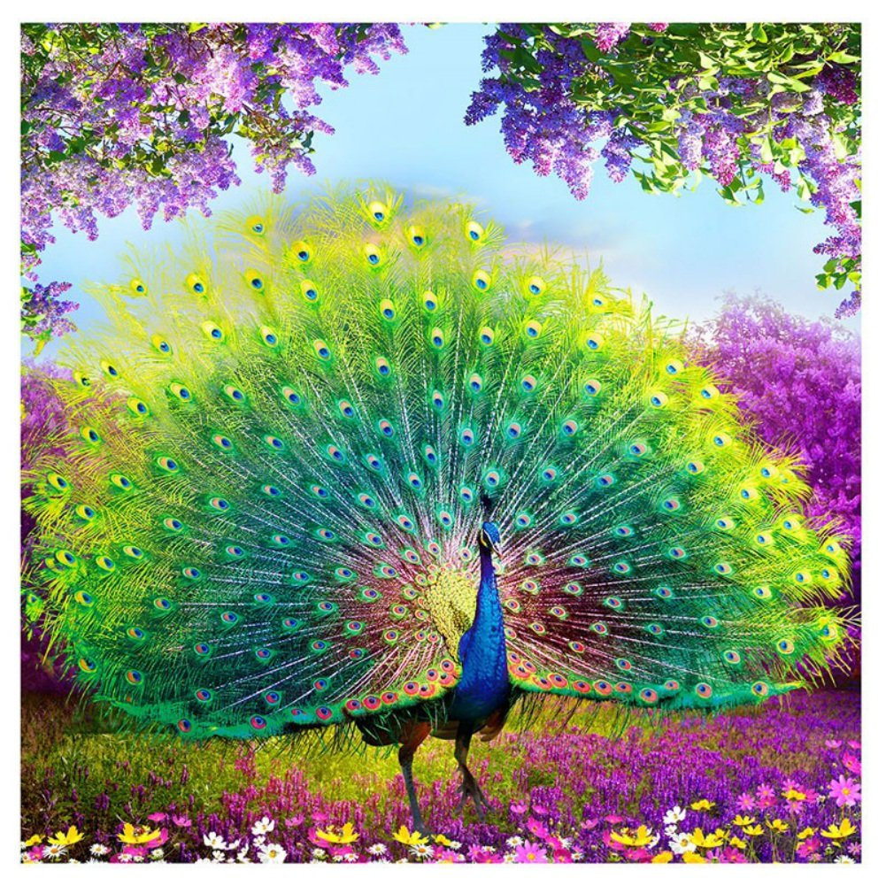 Adarl 5D DIY Diamond Painting Rhinestone Pictures Of Crystals Embroidery Kits Arts, Crafts & Sewing Cross Stitch Peacock 4