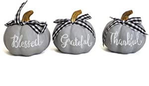 Party Explosions Grey Farmhouse Pumpkin Decorative Figurines (Blessed, Thankful, Grateful) - Set of 3