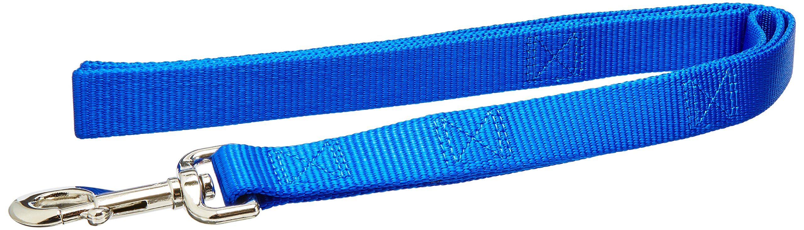 Coastal Pet Products DCP904HBLU Nylon Loops Double Handle Dog Leash, 1-Inch by 4-Feet, Blue