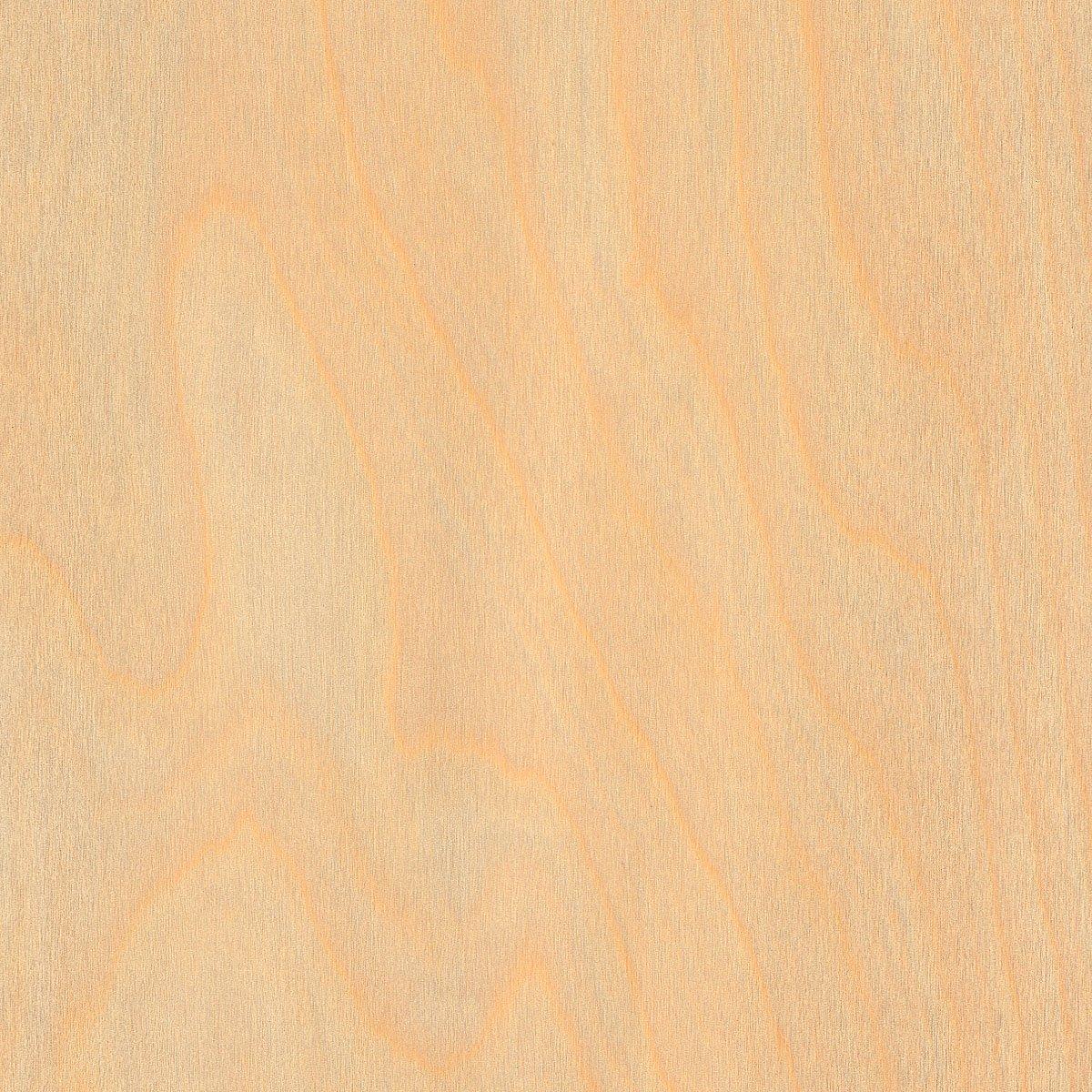 Birch White Wood Veneer Rotary Spliced 4'x8' 10 mil(Paperback) Sheet Wood-All