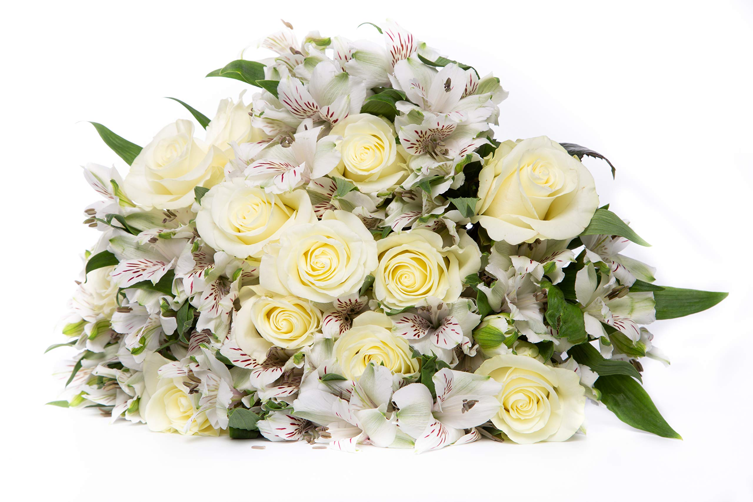 24 Stem White Rose White Alstroemeria Peruvian Lily Monochromatic White Bouquet with One Dozen Roses and One Dozen Princess Lilies for Centerpieces and Long Vase Life, Vase Not Included