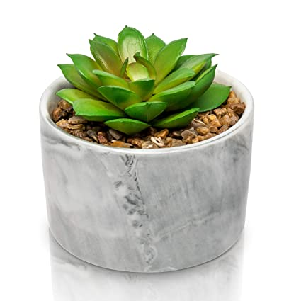 Porcelain Glossy Marble Vase + The Fake Potted Plants Stunningly Realistic Vibe┃Pre Filled Fake Succulent Plants In Pot┃Fake Desk Plant Is Perfect For Sprucing Up The Bathroom by Subtleties