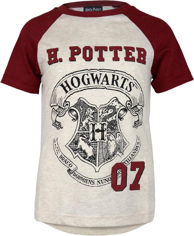 Official Merchandise Harry Potter Hogwarts Crest Boys Short Sleeve Raglan