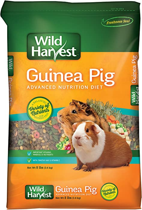 Top 9 Guinea Pig Food Wild Harvest Advanced Nutrition