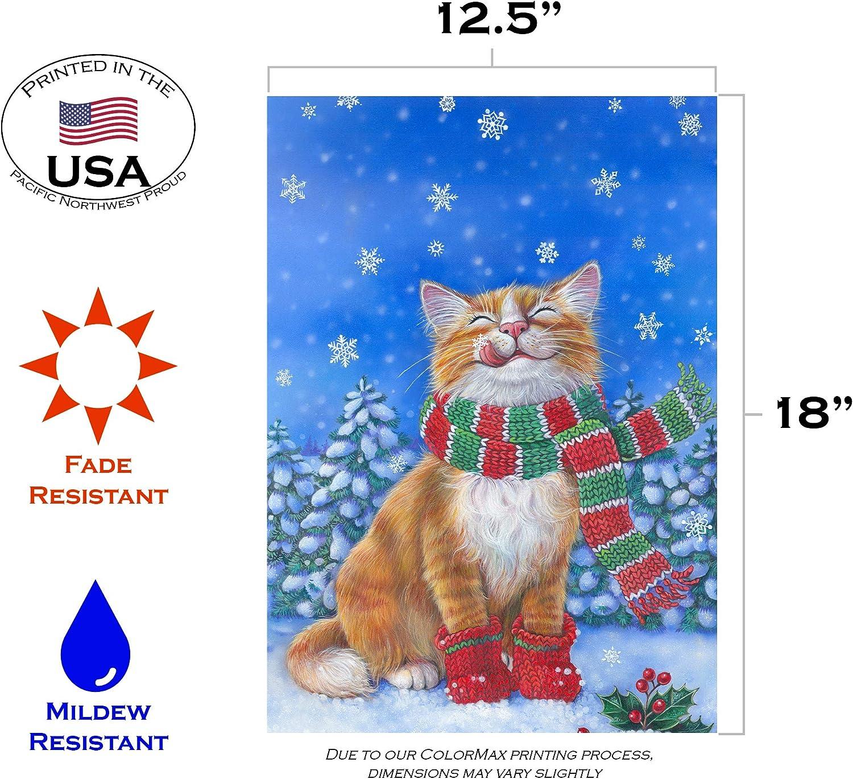 Amazon Com Toland Home Garden Kitten Mittens 12 5 X 18 Inch Decorative Cute Winter Snow Kitty Cat Scarf Garden Flag 119376 Outdoor Flags Garden Outdoor