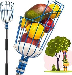 Garden Tree Hand Fruit Picker with Basket Telescoping - 8ft - Mango - Cocoa - Plum - Apple - Cherry - Papaya - for Kids - Best Tall Fruit Picker Harvester Pole