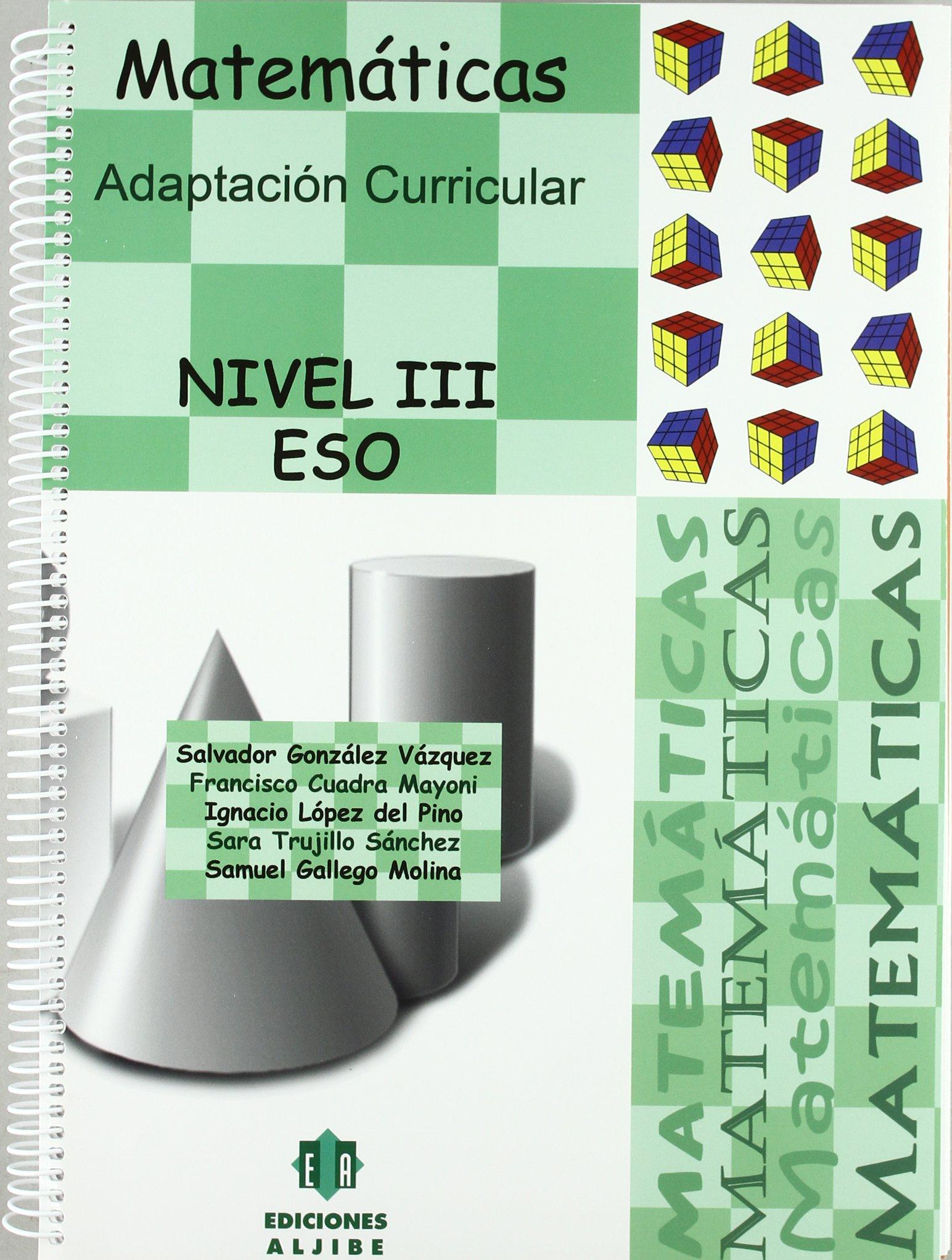Matematicas. Nivel 3. Adaptacion Curricu: Adaptación curricular (ADAPTACIONES CURRICULARES PARA ESO)
