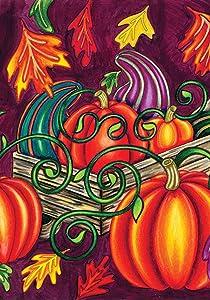 Toland Home Garden 109364 Fall Gourds 28 x 40 Inch Decorative, House Flag (28