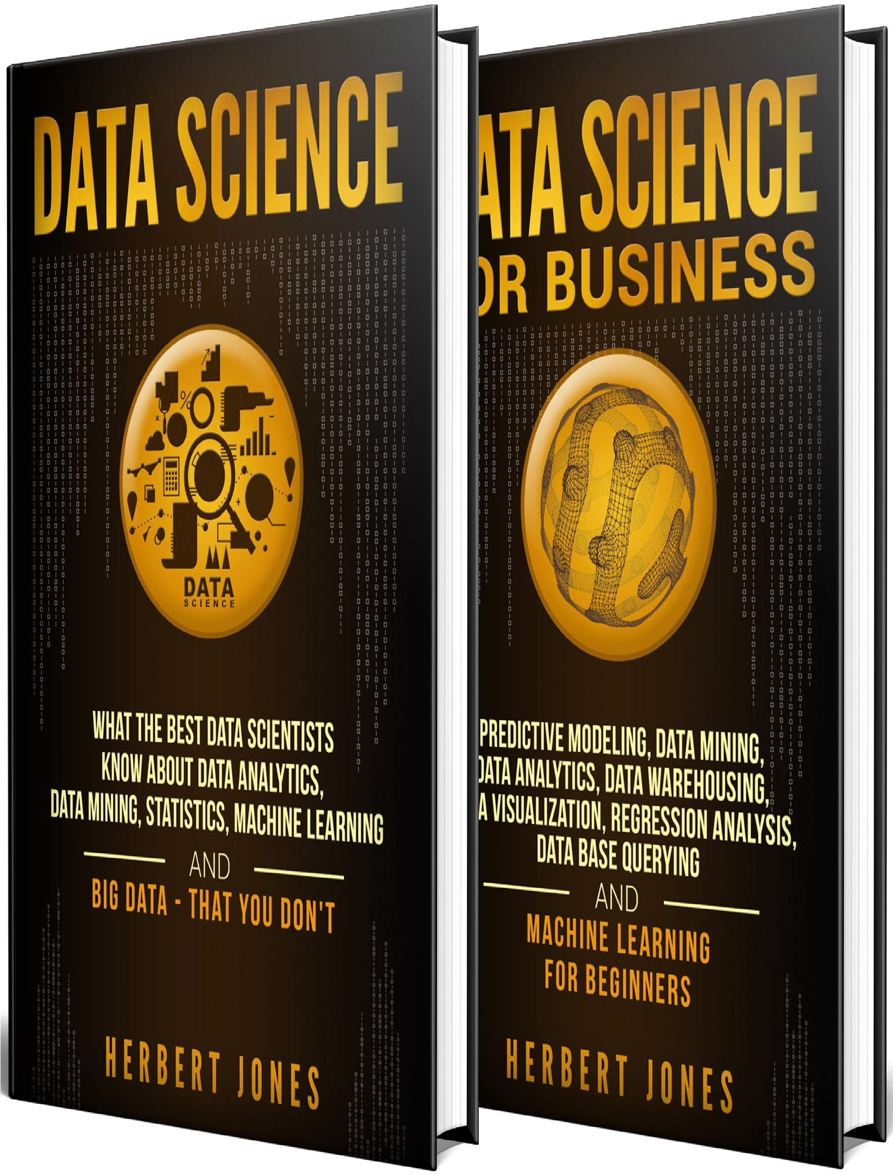 Data Science  The Ultimate Guide To Data Analytics Data Mining Data Warehousing Data Visualization Regression Analysis Database Querying Big Data ... Learning For Beginners  English Edition