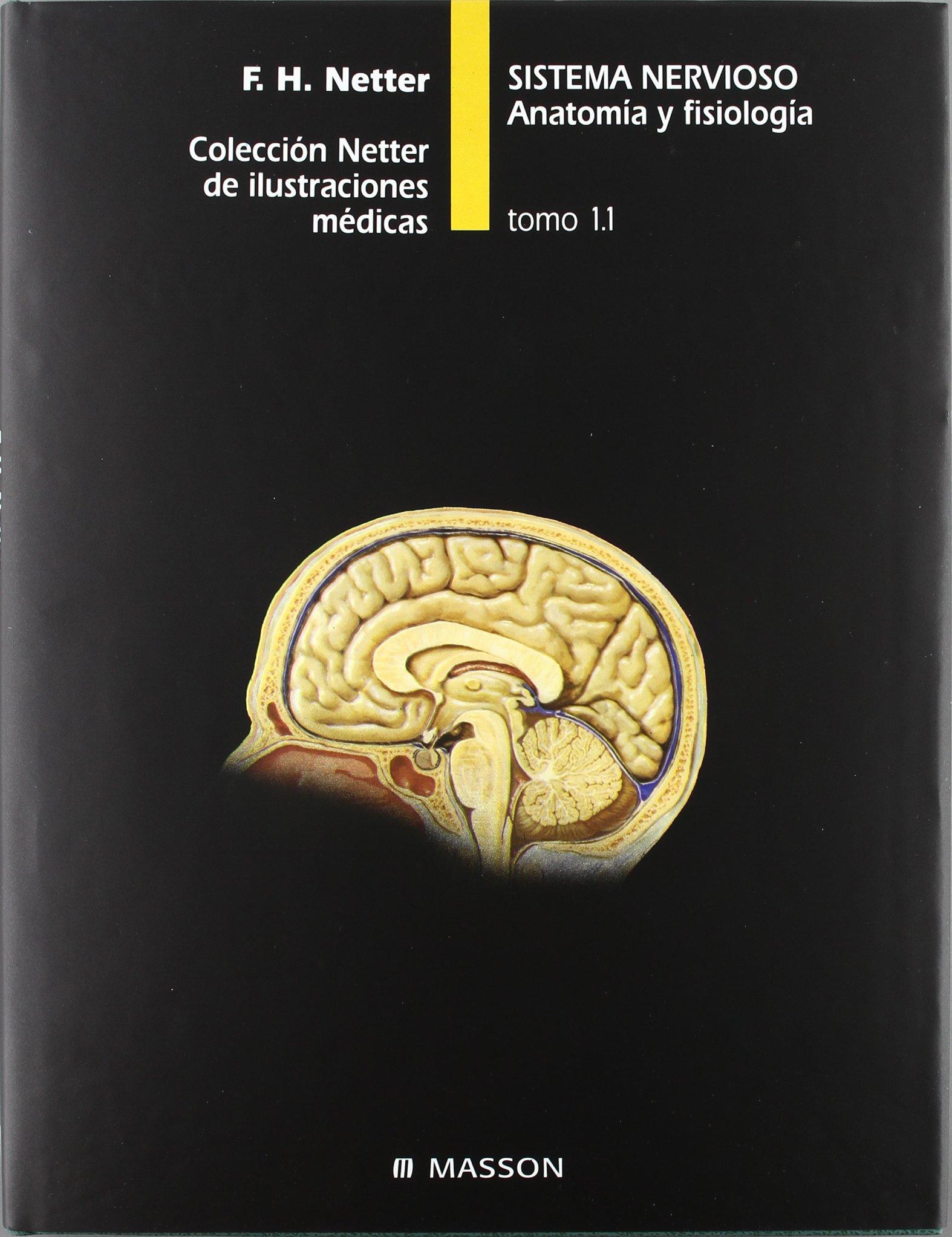 tomo 1/1: sistema nervioso: anatomia y fisiologia: netter: Amazon ...