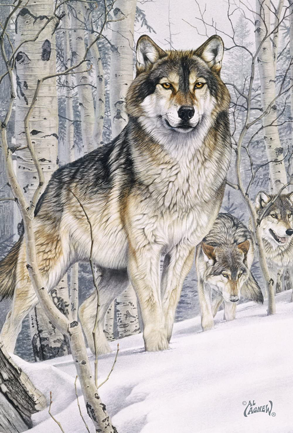 Toland Home Garden Snow Wolves 28 x 40 Inch Decorative Winter Wolf Pack House Flag