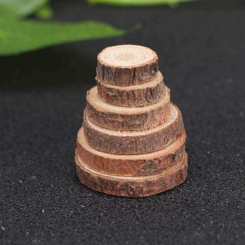 Agger Craft Kit registro Rounds di Legno Decorazioni di Natale Circles Monete Legno Fette