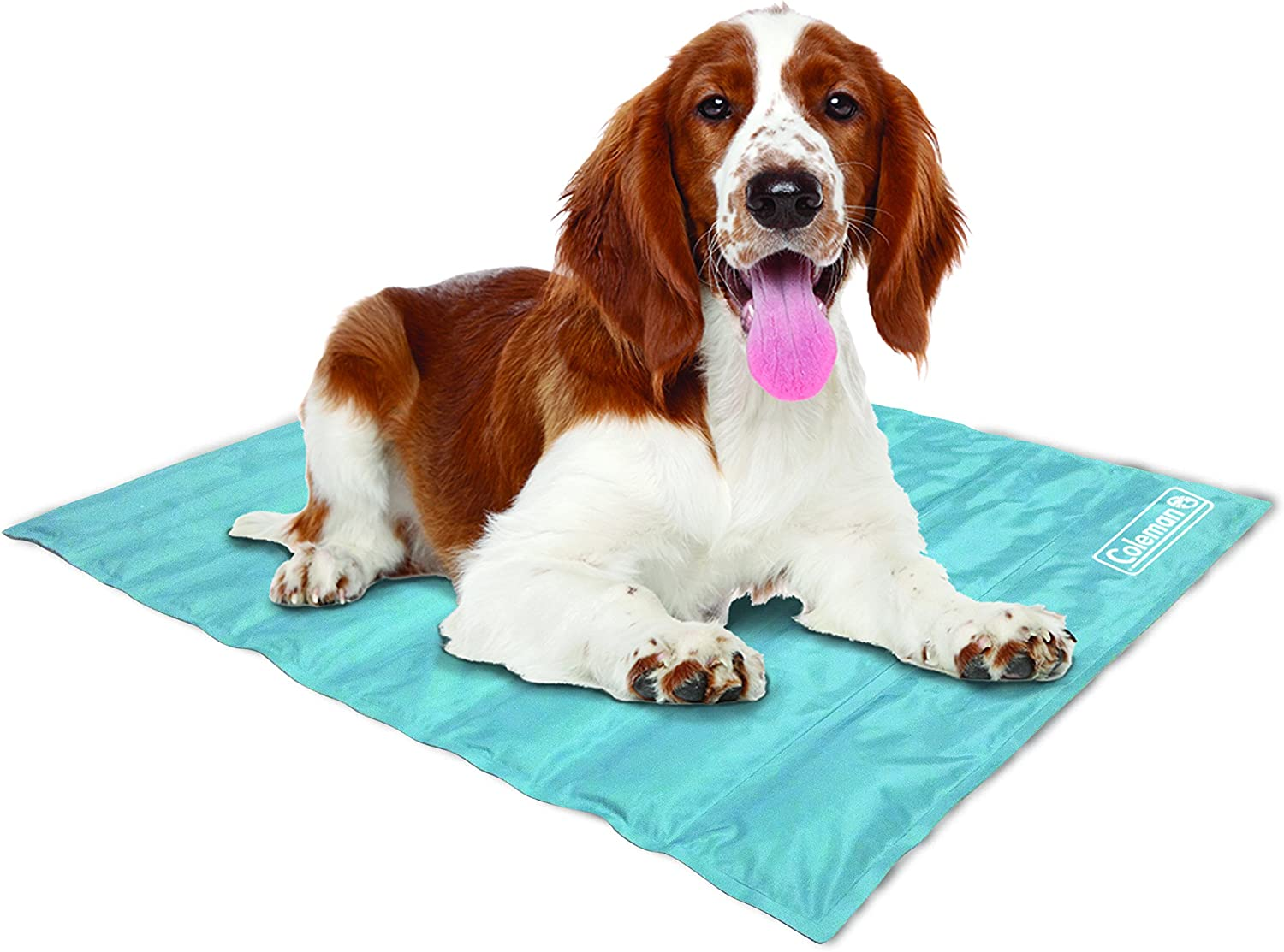 Best Cooling Mat For Dogs (2021): Top 10 Reviews 6