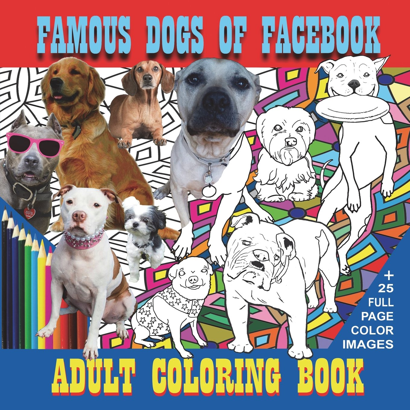 Famous Dogs Of Facebook Neal Wooten 9781612253121 Amazon Books