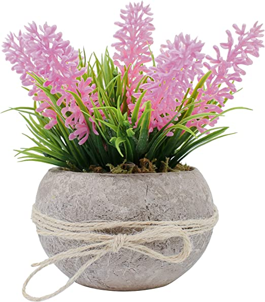 Amazon Com Ezra Decorative Plants Single Piece Artificial Potted
