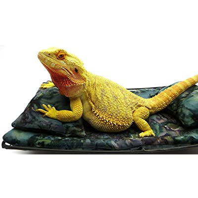 Chaise Lounge for Bearded Dragons, Bluegreen Lavendar Batik Fabric : Industrial & Scientific