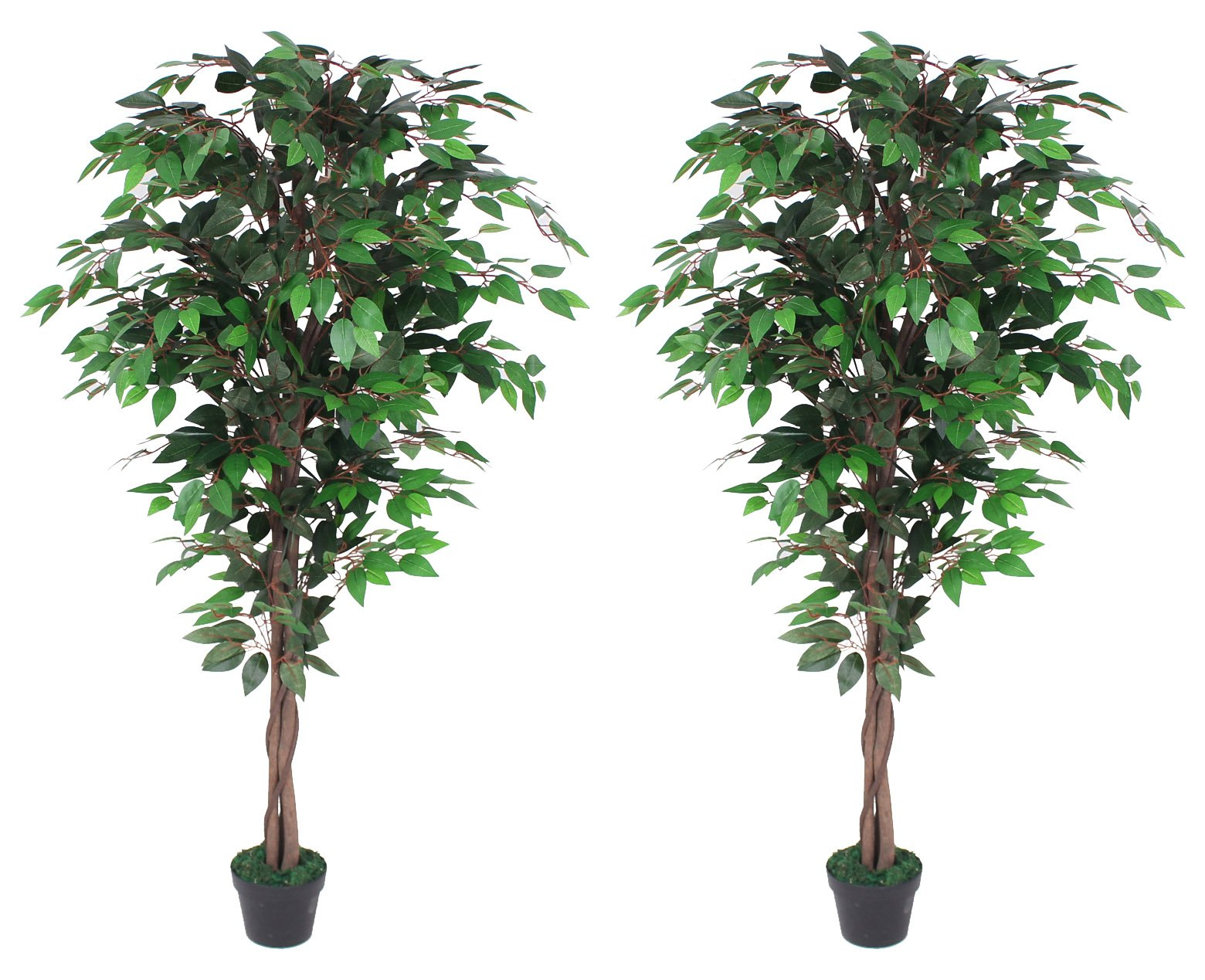 Pair Of AMERIQUE Gorgeous 6 Feet Ficus Trees Artificial Silk Plant, with Nursery Plastic Pots, Feel Real Technology, Super Quality, Green