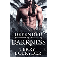 Defended by Darkness: (The Fae Princes) (Wings, Wands and Soul Bonds Book 2) (English Edition)