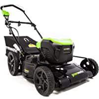 Deals on Greenworks 21-Inch 13 Amp Corded Electric Lawn Mower MO13B00