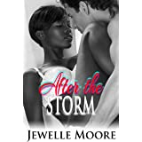 After the Storm (Interracial Erotic Romance)