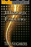 Wizard Falling (The Five Kingdoms Book 7)
