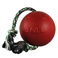 Jolly Pets Romp-n-Roll Ball