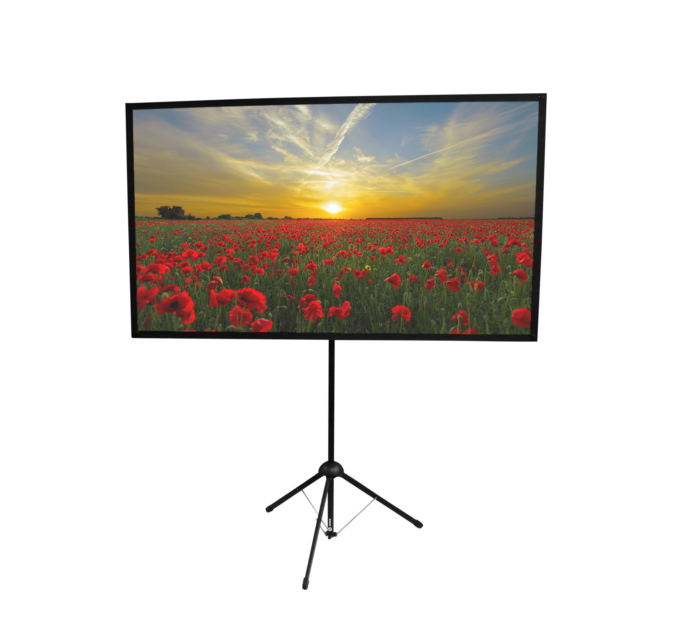 GO-60: 2-in-1 Projector Screen | 60 inch | Mounts on Tripod and Wall | 16:9 Format | 9 lbs | 2 Minute Setup | Includes Carrying Bag | for Mobile Presentation and Home Entertainment |4K Ultra HD Ready