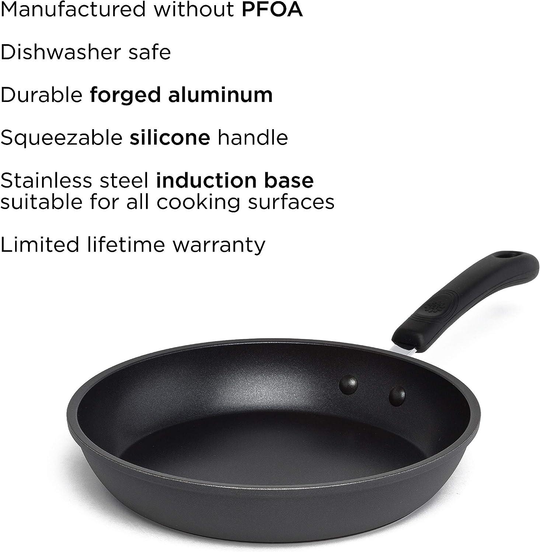 EVRE-5120 Pure Heavy-Gauge Aluminum with a Soft Silicone Handle Epoca Inc Ecolution Evolve Non-Stick Fry Pan PFOA Free Hydrolon Non-Stick