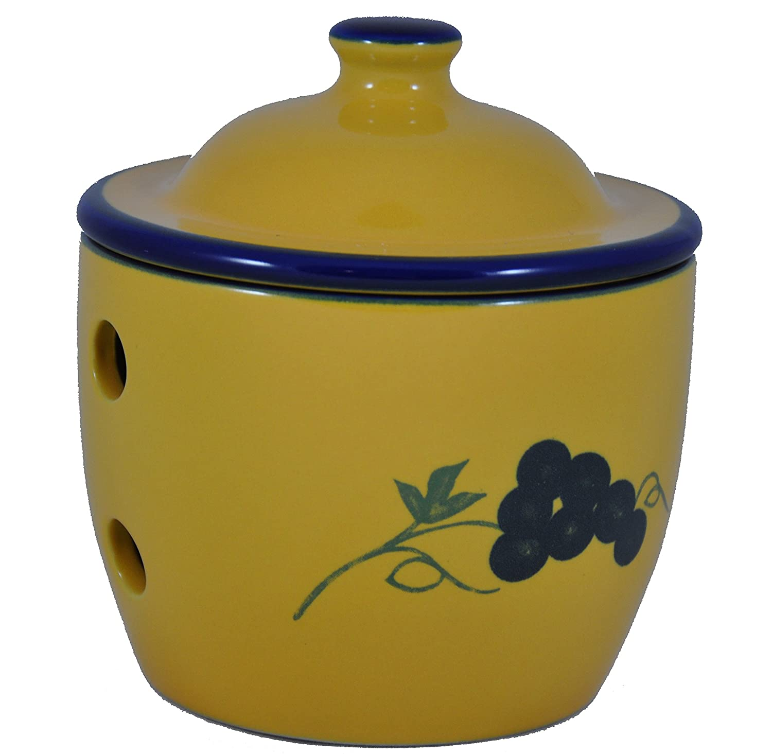 Cooks Innovations Garlic Storage Jar - Grape (blue & yellow) by Cooks Innovations PCJ400