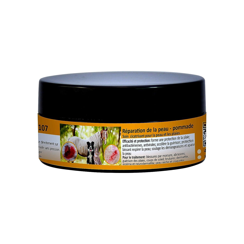 Peticare Soins de la Peau Pommade spéciale - La pommade cicatrisante favorise la régénération, soulage les démangeaisons, apaise la peau, pour cheval, chien, chat, 100% naturel, anti-bactérien, anti-viral, anti-fongique - petAnimal Health 2107 (40 ml)