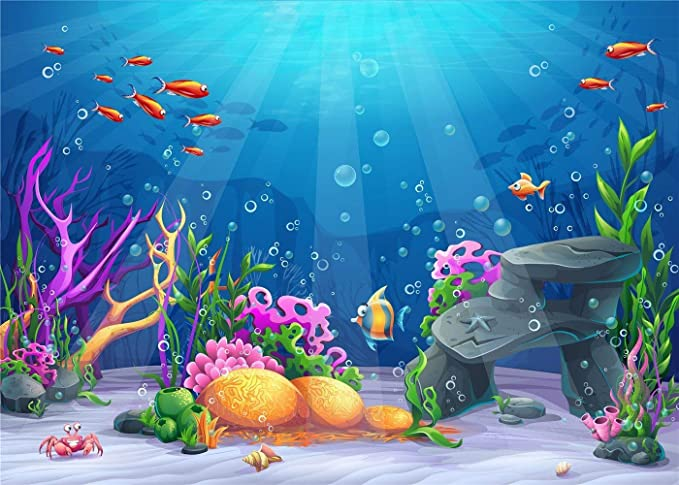 Kate 10x6 5ft Sous Les Fonds Marins De Photographie De Mer Fond De Photo De Poissons Colores Pour La Fete D Anniversaire Amazon Fr Cuisine Maison