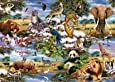 King Wild Animals Jigsaw Puzzle (1000 Pieces)