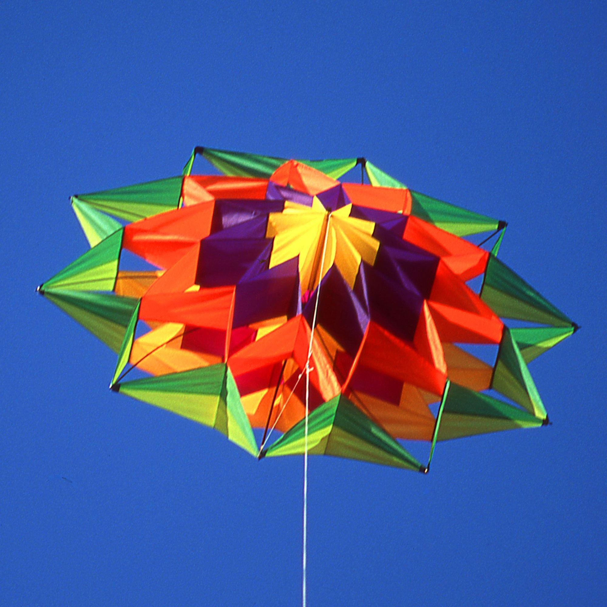 Lotus Single Line Box Kite by Pacific Quest (Image #1)