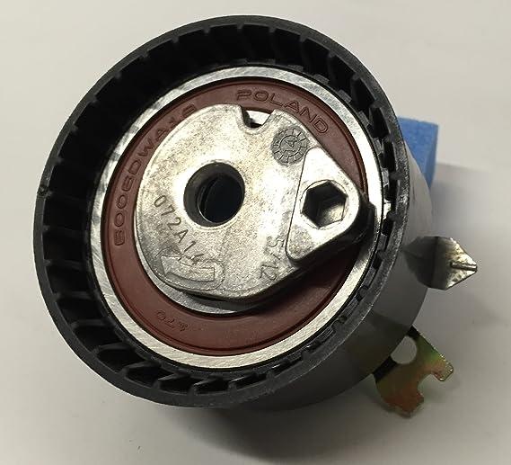KIT DISTRIBUCION RENAULT ORIGINAL motor gasolina 1.4 / 1.6 16v: Amazon.es: Coche y moto