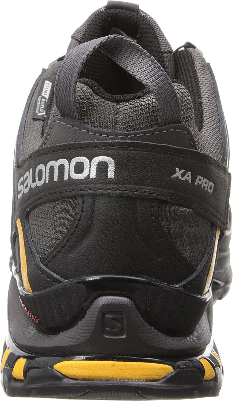 salomon 3d