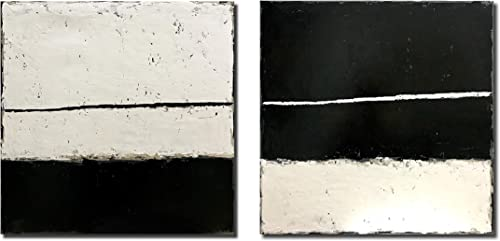 Diathou 2 Pieces of Abstract Wall Art 20x20in x2 100 Hand-Painted Black and White Abstract Paintings Living Room Bedroom Corridor Office Modern Home Decoration