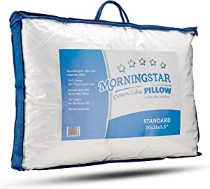 Mastertex Super Plush Microfiber Down Alternative Bed Pillow Review