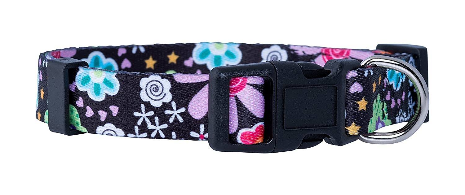 Heart Flowers Medium Heart Flowers Medium Native Pup Flower Dog Collar Paisley Dog Collar (Medium, Heart Flowers)