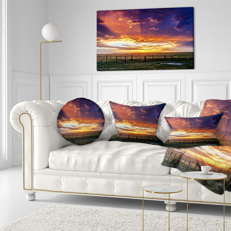Designart CU14053-20-20-C Dramatic Sunset Over Prairie Landscape Printed Round Cushion Cover for Living Room Sofa Throw Pillow 20