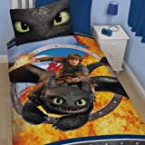 Dreamworks How To Train Your Dragon Toothless Single Duvet Cover Set