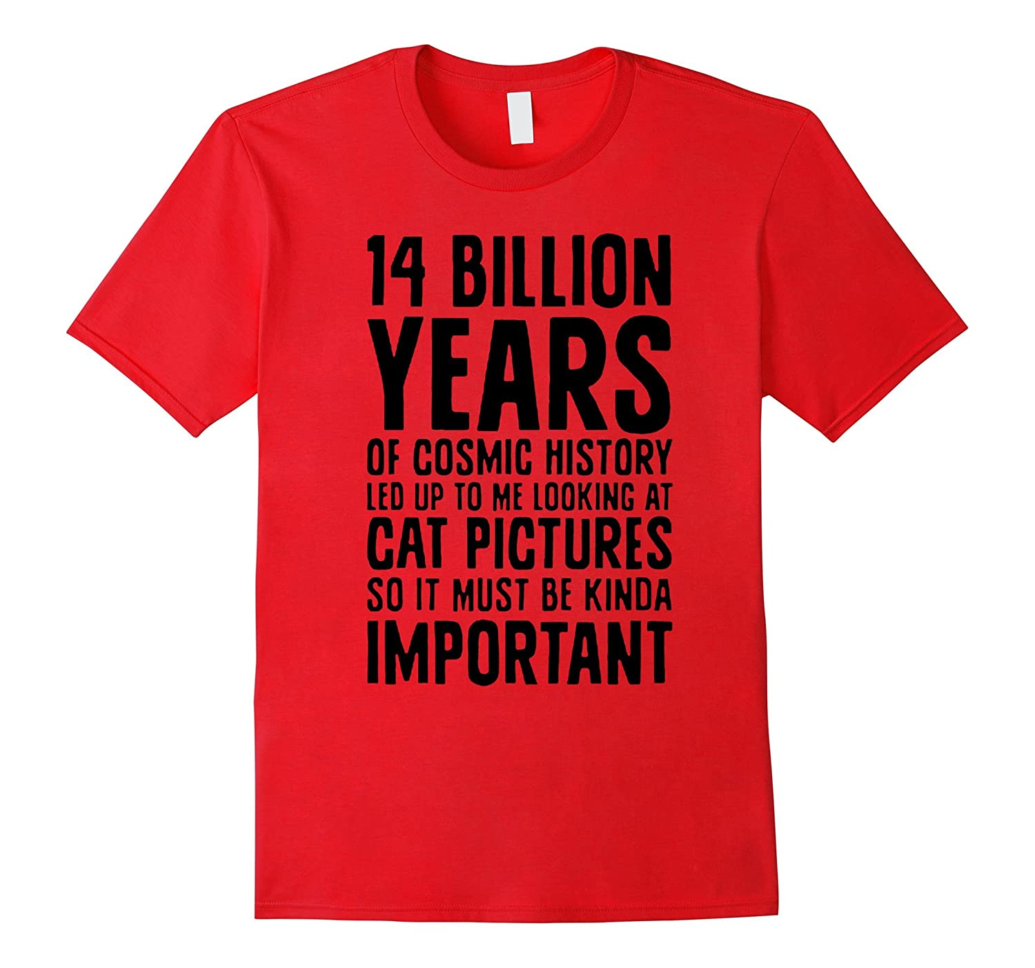 14 billion years looking at cat pictures pets lady tshirts-PL