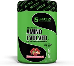 Species Nutrition Amino Evolved, Fermented EAA and BCAA Supplement 30 Servings (Strawberry Watermelon, 13.54oz)