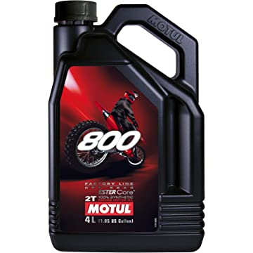 best Motul 800 2T reviews
