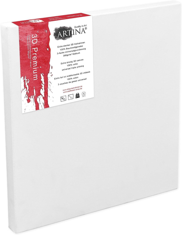 10x100 cm Artina Premium 3D Lienzo Blanco para Pintar con Bastidor Extra Grueso 380g//m/²