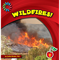 Wildfires! (21st Century Basic Skills Library: Natural Disasters)