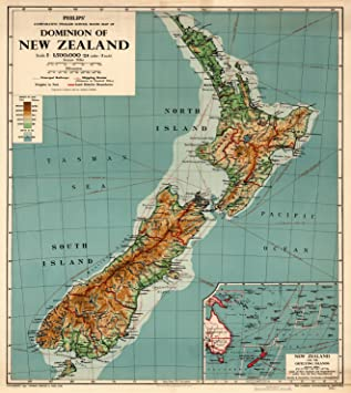Amazoncom Map Poster New Zealand Physical 24x215
