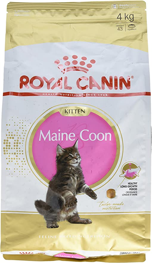 Royal Canin Comida para gatos Kitten Maine Coon 4 Kg: Amazon.es ...