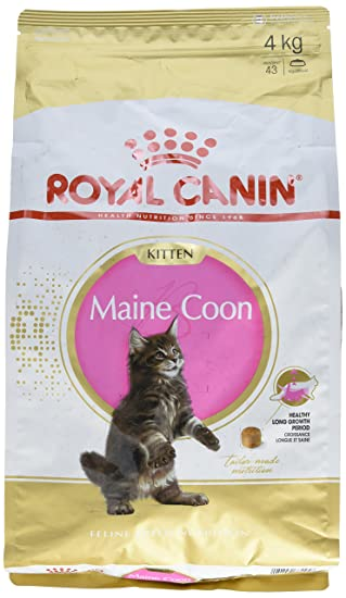 Royal Canin Comida para gatos Kitten Maine Coon 4 Kg