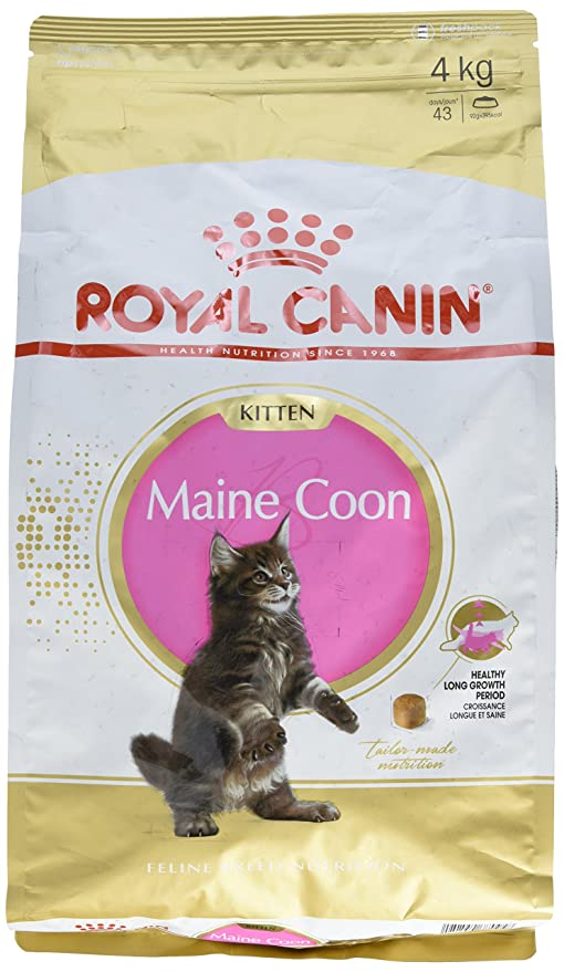 Royal Canin Comida para gatos Kitten Maine Coon 4 Kg