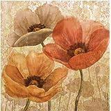 Thirstystone 4-Piece Poppy Allure II Coaster Set